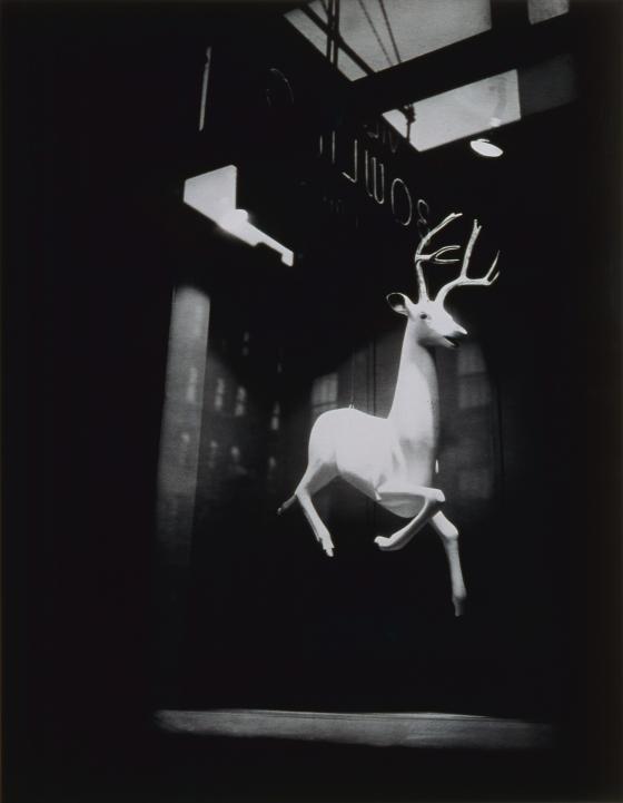 Designer's Window, Bleecker Street, New York