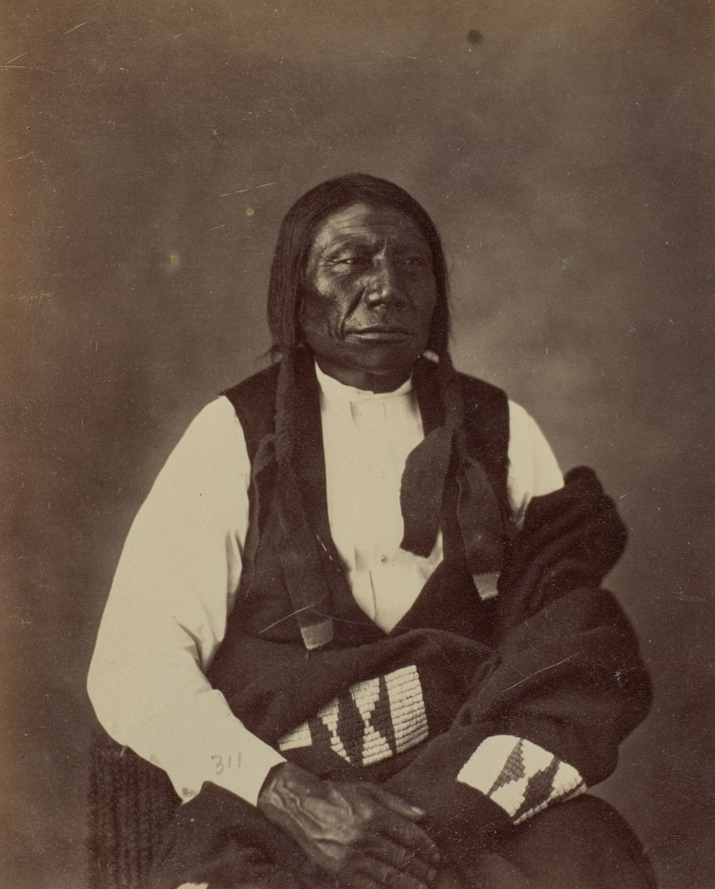 Sunkawan To (Blue Horse), Oglala Lakota