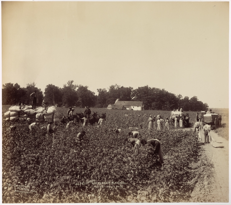 Jno. P. Richardson's Green Grove Plantation, Mississippi Valley Route