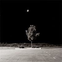 Fort Collins from the series Summer Nights