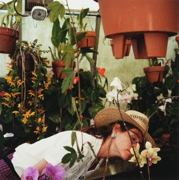 Pamela in the Greenhouse, Boulder